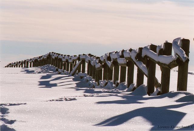 Snow Fence (6)